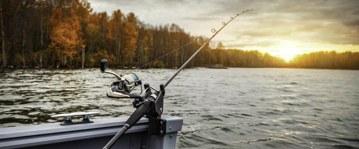 Jak se sbalit na ryby s dětmi