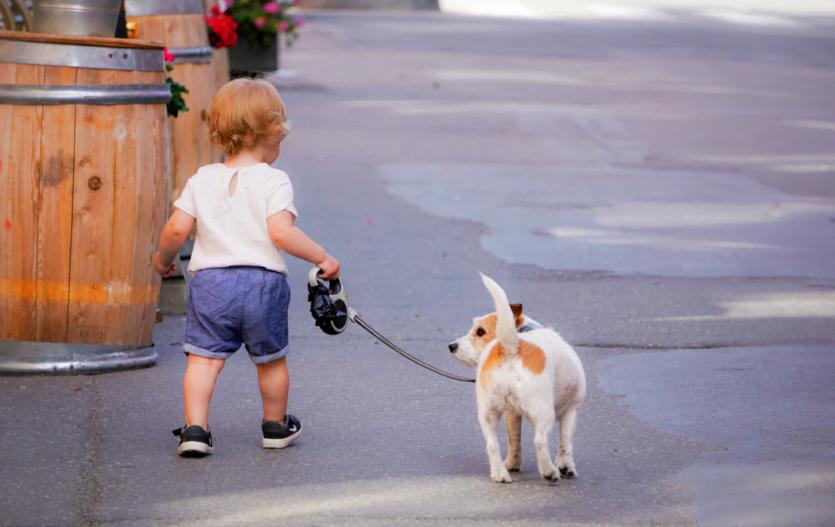 3 důvody, proč jsou dětské boty DD Step ideální volbou