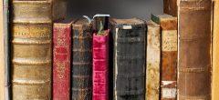 O víkendu za knížkami, do mraveniště či Trnkovy zahrady 2