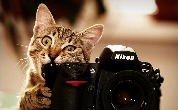 Kroužek fotografování