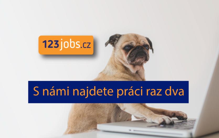 Tipy, jak hledat práci