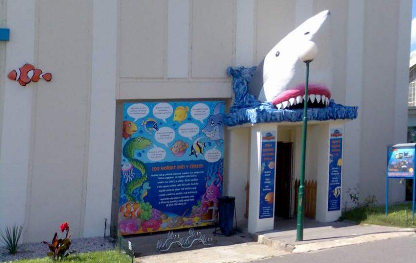 S dětmi můžete vyrazit na Play, do akvária nebo na vláčky